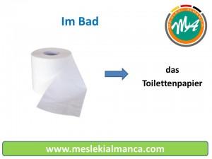 das Toilettenpapier