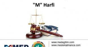 """Almanca Hukuk Sözlüğü - """"M"""" Harfi 5"""