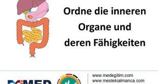 Tıp Almancası Meslek Eşleştirme Alıştırması (B1 Seviyesi) 13