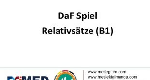 DaF Spiel über Relativsatze  (B1) 10