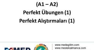 Perfekt Alıştırmaları 1 (A1-A2) / Perfekt Übungen 1 (A1-A2) 9