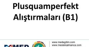 Plusquamperfekt Übungen - Alıştırması (B1) 12