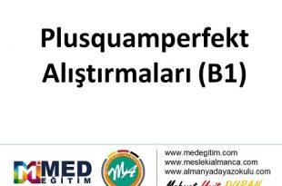Plusquamperfekt Übungen - Alıştırması (B1) 1