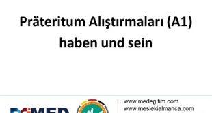 """""""haben"""" und """"sein"""" (A1) - Prateritum Alıştırmaları 8"""