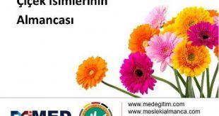 Çiçekçiler İçin Almanca 8