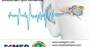 Kulak Burun Boğaz Doktorları İçin Almanca 1 - Deutsch für den  Hals Nasen Ohren Arzt 1 13